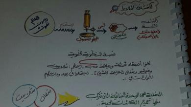 Photo of الصف العاشر ملخص أحياء