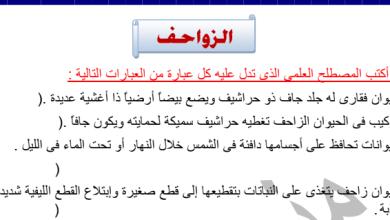 Photo of الصف العاشر بنك أسئلة أحياء الزواحف اعداد منى الشهاوي