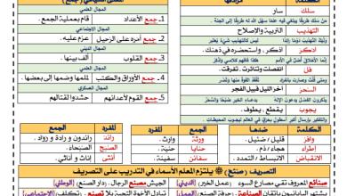 Photo of معجم الثروة اللغوية الصف السابع الوحدة الأولى رحلات استكشافية