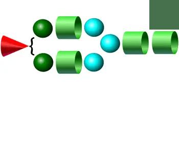 A1 2-AB Glycan
