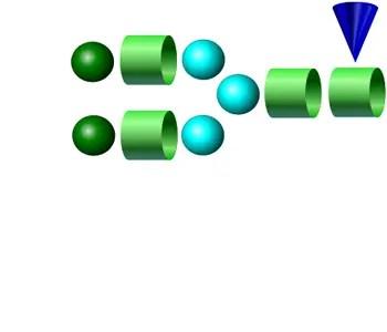 NA2F 2-AB Glycan