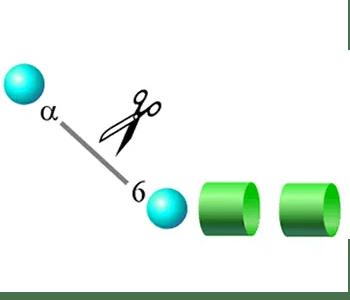 core alpha mannosidase image