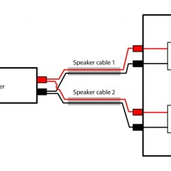 Wiring Connection Diagram Energy Level Of Co Bi Speakers An Exploration The Benefits Fig 3