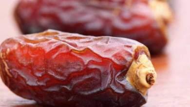 التمر أم البلح.. أيهما الأكثر فائدة في رمضان؟