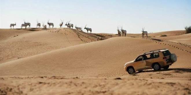 أجمل 10 أماكن ذات طبيعة خلابة في الإمارات