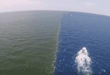 صورة مذهلة لالتقاء مياه نهر المسيسبي وخليج المكسيك.. فما حقيقتها؟