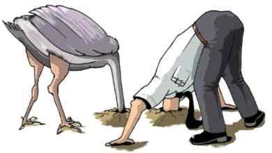 خوفا من الأعداء.. هل يدفن النعام رأسه في الرمال حقا؟