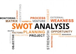 What are the significant factors to company analysis?