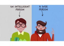 What is the difference between an intelligent person and a wise person?