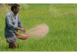 Which country has announced that it will fund South Asian Nitrogen Hub, a research project to study Nitrogen pollution in India and South Asia?