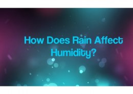The humidity of the air depends upon ?