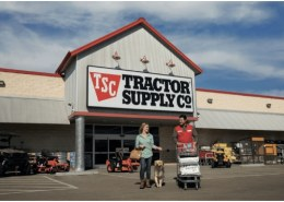 Can we buy Tractor Supply Company  stock now (2020) for long term?
