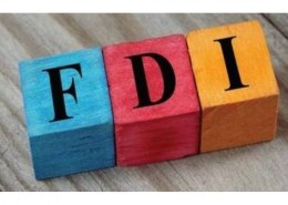 What does 100 percent FDI mean?