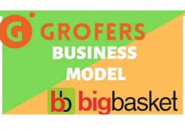 What is Grofers business model?