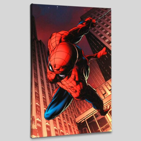 """amazing Spider-man #641"" Pop Art - Marvel Comics 176545"