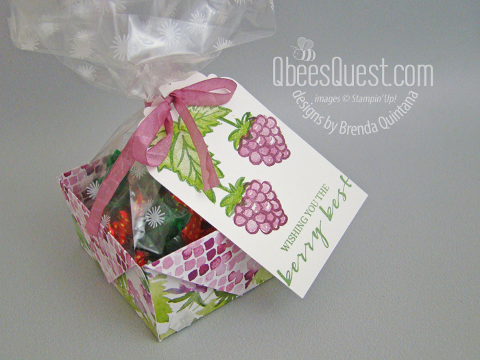 Diagonal Fold Raspberry Basket