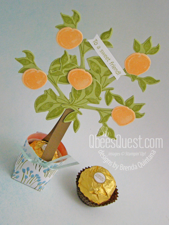 Ferrero Rocher Peach Tree