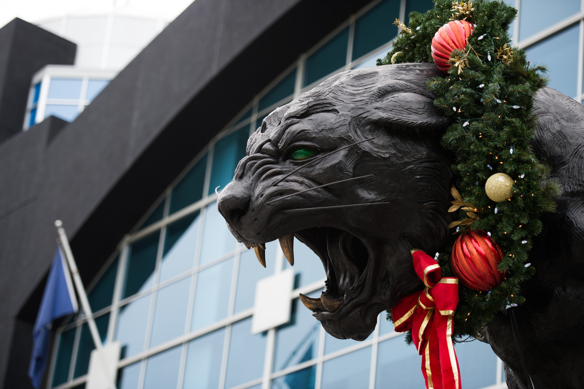 Photo Of The Week Panther Statue At Christmas By Jamey
