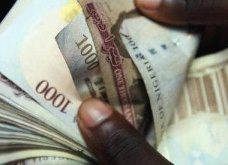 naira money cash