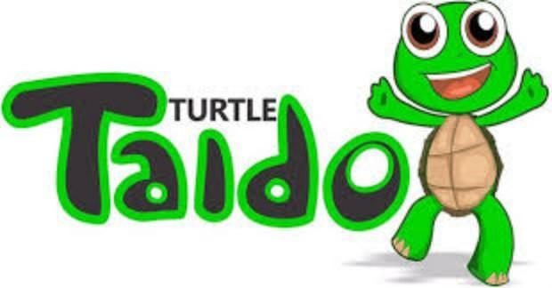 Turtle Taido