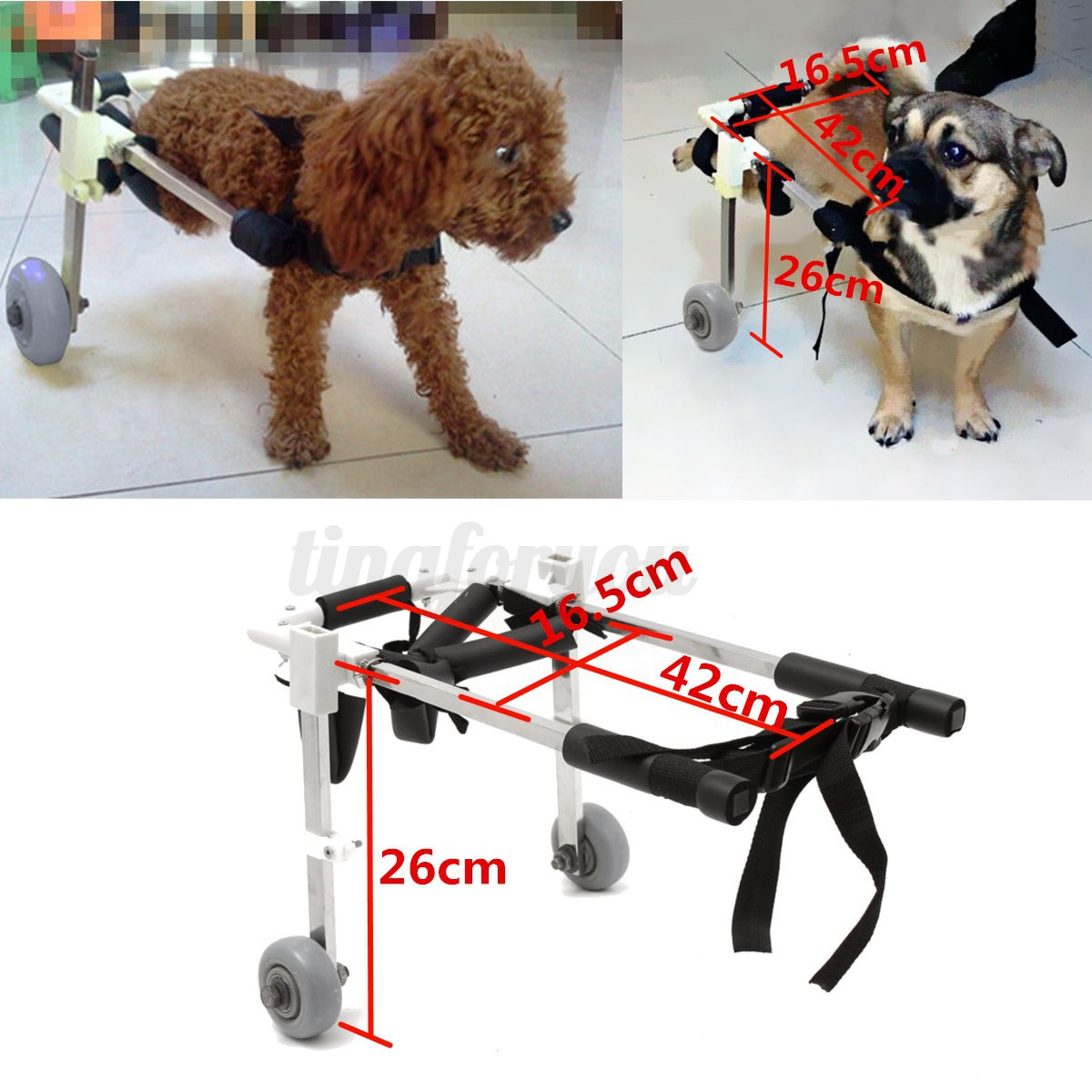 wheelchair dog fold out lawn chair 4 types variety pet for handicapped hind legs