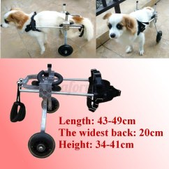 Wheelchair For Cats Target Purple Chair 4 Types Variety Pet Handicapped Hind Legs