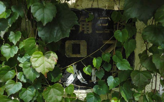 Qingdao Photos Taipingjiao Ivy Gate