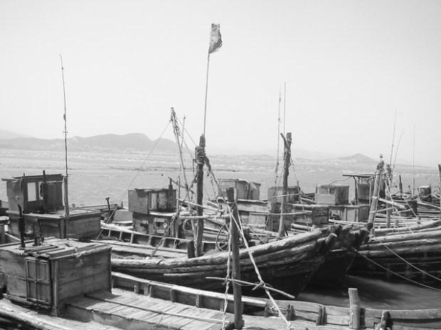 Qingdao Photos Clay Army V Boats Yangkou BW