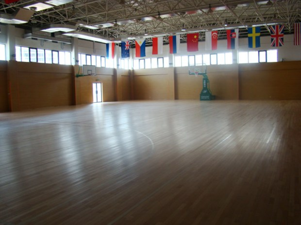 YCIS Qingdao International School Gym