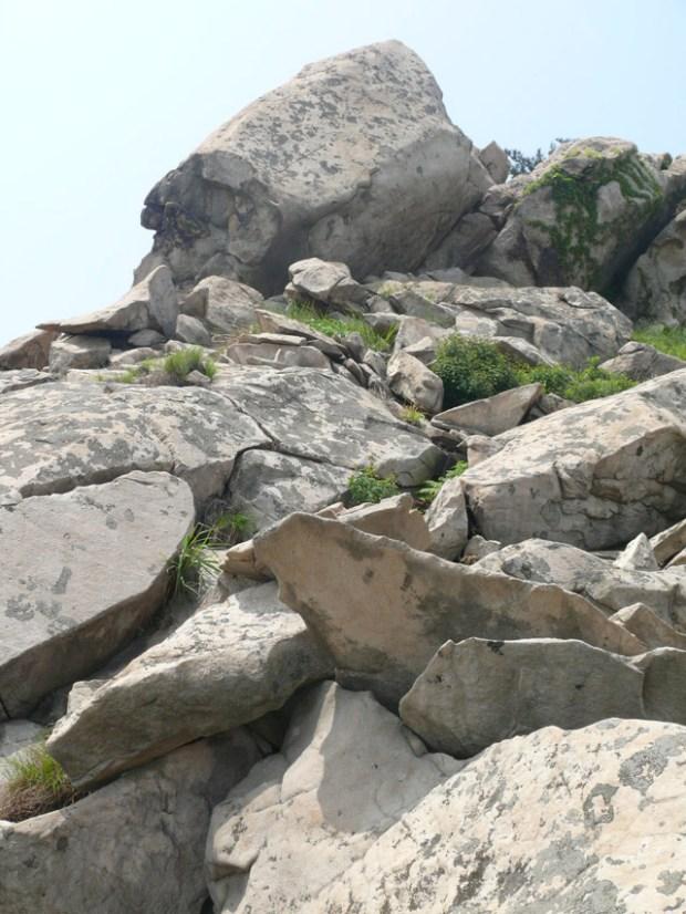 Artistic Stone Creations Qingdao