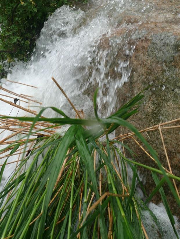 Qingdao Water Season Rush