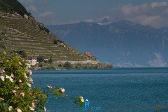 2015-05-27-Qispi-Jura_Leman-Lavaux-IMG_9259