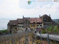 2015-04-27-Lavaux-Photos_Steph-IMG_3659