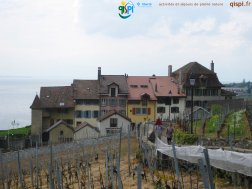 2015-04-27-Lavaux-Photos_Steph-IMG_3659