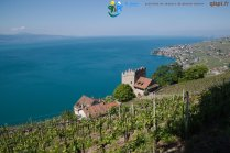 2015-05-27-Qispi-Jura_Leman-Lavaux-IMG_9156
