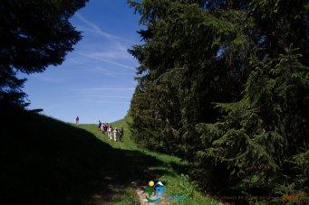 2015-05-28-Qispi-Jura_Leman-Hautes_Combes-IMG_9276