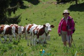 2015-05-28-Qispi-Jura_Leman-Hautes_Combes-IMG_9289