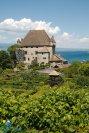 2015-05-29-Qispi-Jura_Leman-Yvoire-St_Cergue-IMG_9429