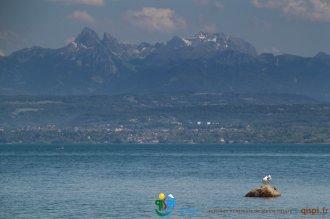 2015-05-29-Qispi-Jura_Leman-Yvoire-St_Cergue-IMG_9441