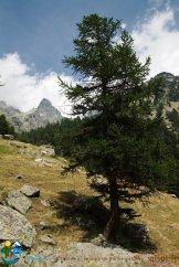 2015-07-13-Qispi-Tour_Viso-Vallanta-JIMG_0015