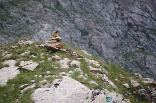 Marmotte 1 – Jour 4 – Tour du Marguareis – Juin 2016 – Trek, Rando, Italie