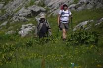 Dernières pelouses fleuries 2 – Jour 5 – Tour du Marguareis – Juin 2016 – Trek, Rando, Italie