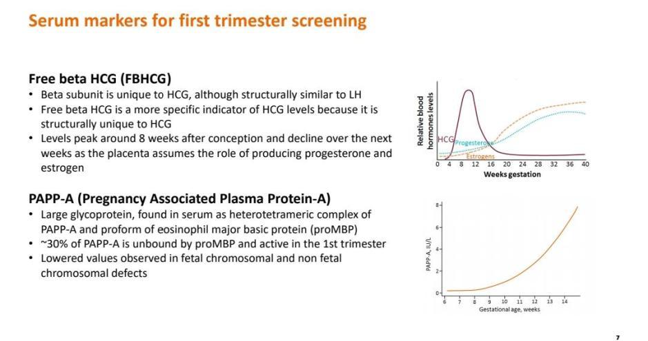 first-trimester-screening