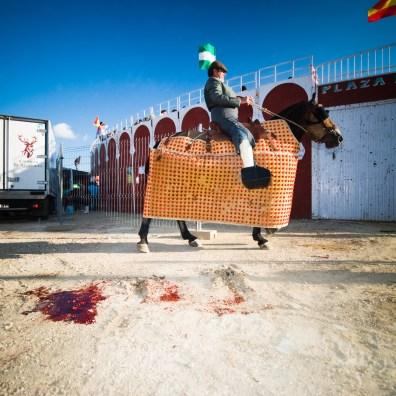 Bullfight at the Feria de Ganado, Alcalá de los Gazules May 2008