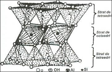 Formarea sl alcatuirea partii minerale a solului referat