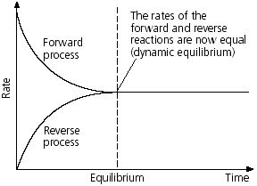 What is Dynamic Equilibrium?  QS Study