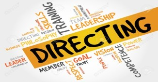 Responsibilities of Professional Manager in the Process of Directing.