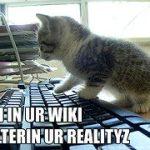 Conosci veramente il web? Ecco cosa non devi perderti
