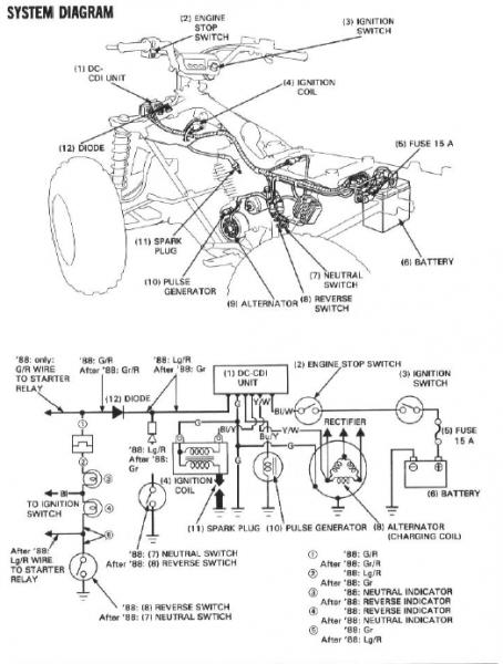 Honda Trx200sx Wiring Diagram : 29 Wiring Diagram Images