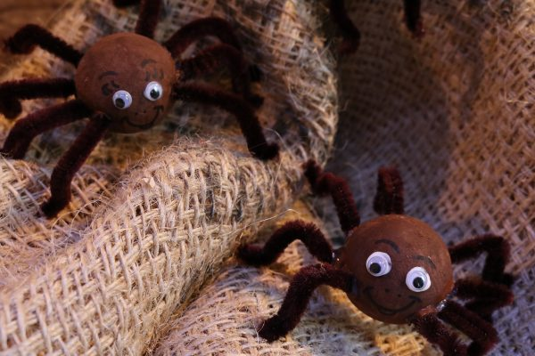 DIY-Herbst-Spinnen-3